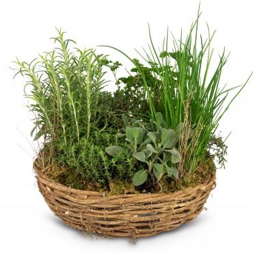 Little herb garden (planted)