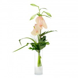 Even men deserve flowers