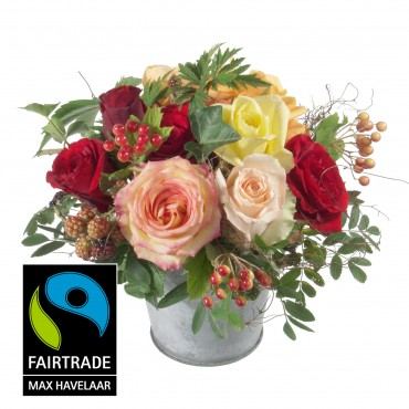 Magic of Rose with Fairtrade Max Havelaar-Roses, big blooms