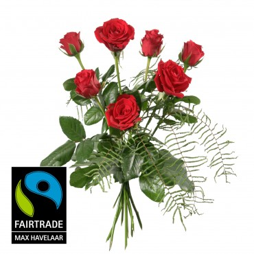7 Red Fairtrade Max Havelaar-Roses, shortstemmed with greenery
