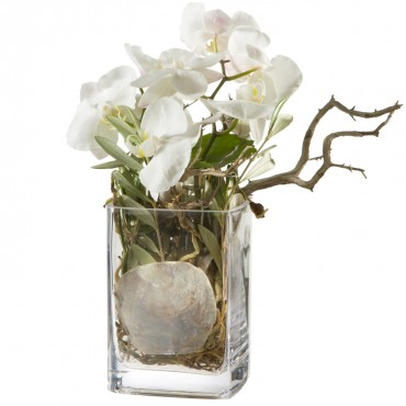 Mystical Orchids (including vase)