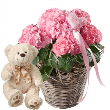 Hydrangea (pink) with Heart and teddy bear (white)