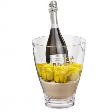 Hello Sunshine: Prosecco Albino Armani DOC (75 cl) incl. ice bucket