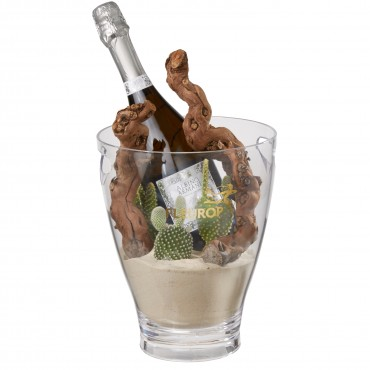 Desert Dream: Prosecco Albino Armani DOC (75 cl) incl. ice bucket