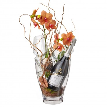 "A Touch of Exotic: Prosecco Albino Armani DOC (75 cl), incl. ice bucket and two ""Connaisseur"" glasse"