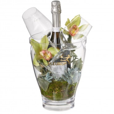 "In Harmony with Nature: Prosecco Albino Armani DOC (75 cl) incl. ice bucket and two ""Connaisseur"" gl"