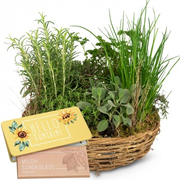 "Little herb garden (planted) with bar of chocolate ""Hello Sunshine"""