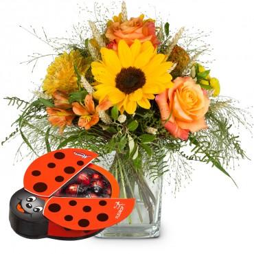 Smiley with chocolate ladybird