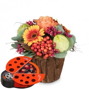 Happy Surprise with chocolate ladybird