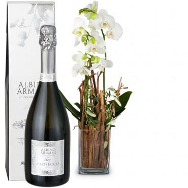Magic (Orchid) with vase and Prosecco Albino Armani DOC (75cl)