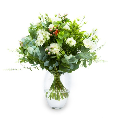 The Elegance Of White Flowers
