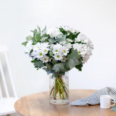 Bouquet of White Margaritte Daisies