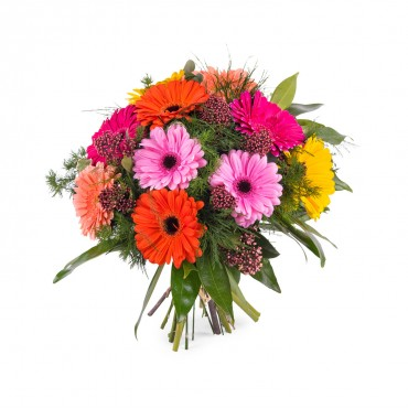 Bouquet of multicoloured Gerbera Daisies