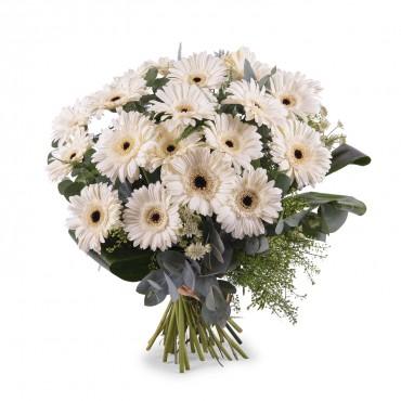 Bouquet of White Gerbera Daisies