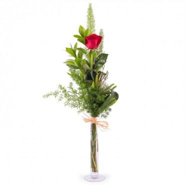 1 Long-stemmed Red Rose