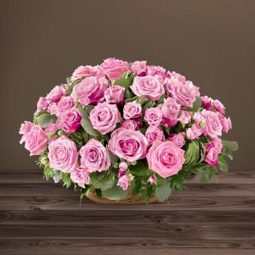 Rosae rose