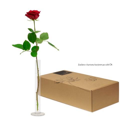 Levně Červená dlouhostonká růže