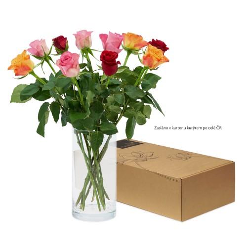 Levně Mix pestrobarevných růží
