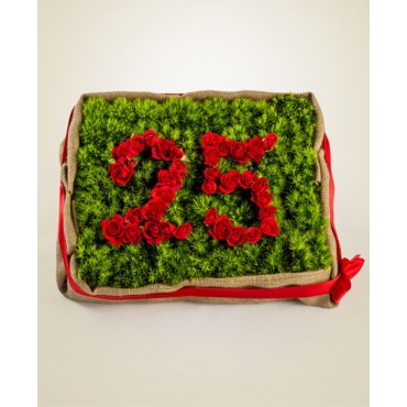 25° Anniversary